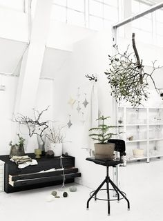 image #white #plants #black #all #and #few #with