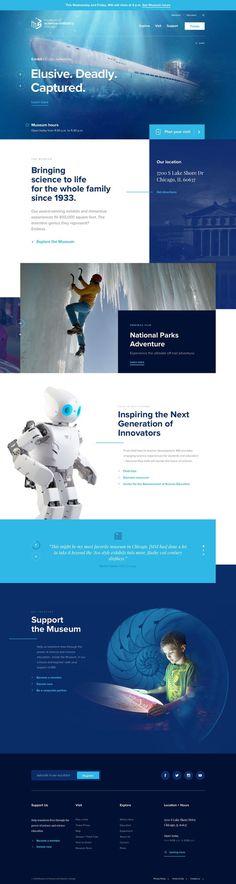 6d2be850a9cc6b9c2a472b6f78af9d22--webdesign-layouts-responsive-webdesign.jpg (736×2757)