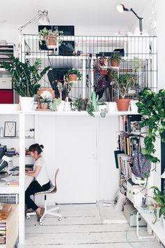 #interior #plants