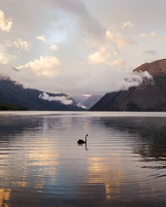 Remarkable Landscapes of New Zealand by Tom Hackett