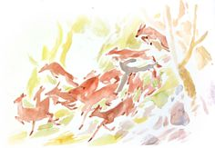fawn, deer, watercolor