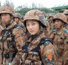 Chinese Brown Flecktam #camo #military