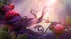 liliandarmono.com » Anna Sui : Rose #motion #board #styleframe