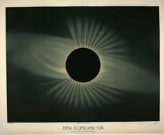 The Old, Awesome Space Drawings of E.L. Trouvelot - Rebecca J. Rosen - Technology - The Atlantic #draw #total eclipse #sun