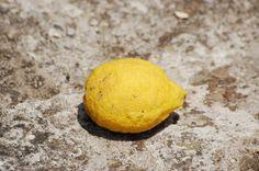 Lemon.png 660×439 pixels #chris #ground #hannah #fruit #photography #tuscany #lemon #italy
