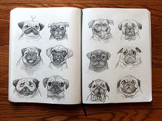 pugs #sketch