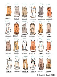 All sizes | World of Kitties | Flickr - Photo Sharing! #illustration #cats #gemma correll