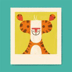 Wild Polaroids - Lydia Nichols