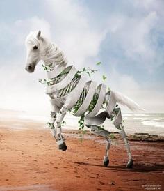 Dreamlike Animals: Mischievous Photo Manipulations by Ade Maolana