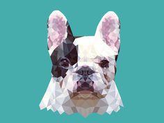 TRENCH #triangulation #triangles #dog