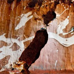 Annie Watson Creates Art Out of Destruction Photo #photograhy #photography #rust