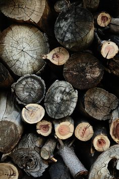 THE BROWN WORKSHOP #wood #photo #texture