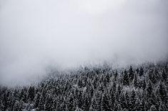 Fog. on Behance