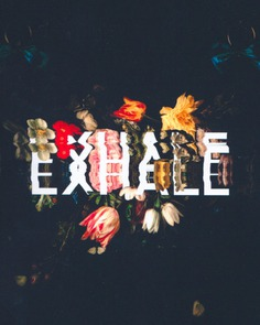 Typography Part III – EHMOTION #digitalart #typography #floral #scan #distorted