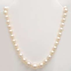 Necklace made of cultured pearls