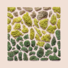 Natural Materials Organized into Precise Geometric Shapes by Kristen Meyer | Colossal