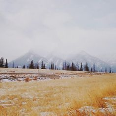 Instagram of Alex Strohl #inspiration #photography #iphoneography