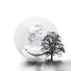 #black and white#tree#art