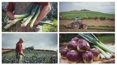 Millbank Farm / FormFiftyFive