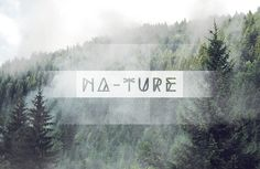 Na-Ture #forest naturesmog
