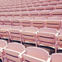 bleached bleachers by Sallie Harrison