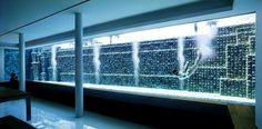 Onestep Creative - The Blog of Josh McDonald #pool #swimming #architecture #girl