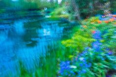 The garden of Monet #photography