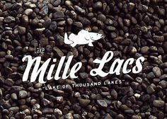 Branding 10,000 Lakes #lake #logo #fish #branding
