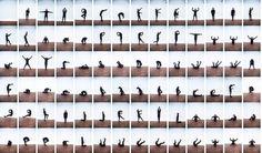 Anatomy Type  Philip Battin Studio