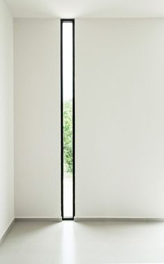B_02 #window #light #architecture #trees