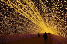 Japans Tunnel of Lights 6 #tunnel #light #japan #installation