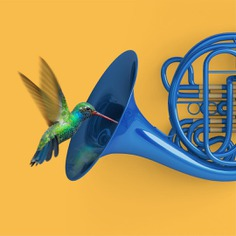 Music is sweetener for the soul. #music #mashup #color #colourful