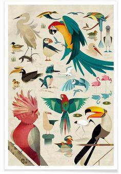 Birds Illustration by Dieter Braun #illustration #animal #geometric #minimal #iconn #iconic #birds