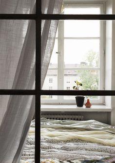 FANTASTIC FRANK WINDOW