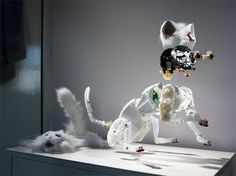 Holger Pooten Photography #transformer #white #cat #robot