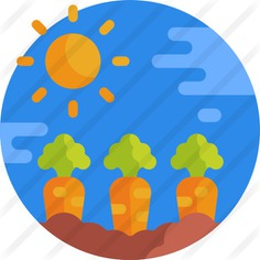 See more icon inspiration related to food and restaurant, farming and gardening, countryside, agriculture, country, harvest, farming, farm, vegetables, weather, nature, food and fruit on Flaticon.