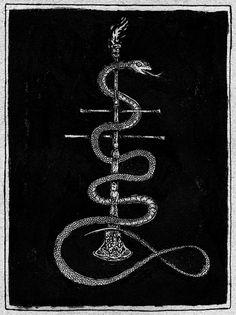 NATVRES MORTES ILLVSTRATION ∆ #snake