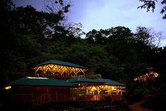 "CJWHO â""¢ (finca bellavista: a sustainable treehouse...) #house #tree #costa #design #landscape #photography #architecture #rica"