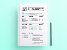 Free Professional Looking Resume Template with Stylish Design