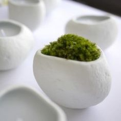 Porcelain planters by 224porcelain | Spoon & Tamago #objects #white #design #books #minimalist