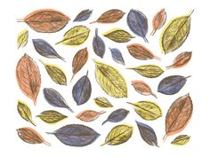 autumn, leaves, fall, season, texture