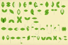 Patrick Draws Things #patrick #hruby #leaves #typography