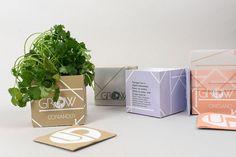 Grow Up – Herb Growing Kits by Nick Murphy