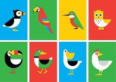 Ryan Chapman, Birds   YCN