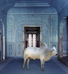 India Song by Karen Knorr #art #photography #inspiration