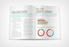 Herman Miller #typography #layout #annual report #ring chart