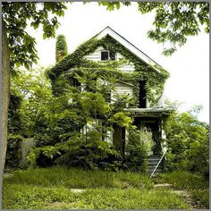 3748194758_aef81b1c30.jpg (image) #house