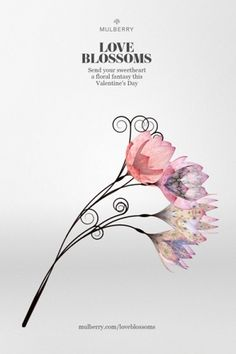 Creative Review - Mulberry says it with (digital) flowers #illustration #flowers #mulberry