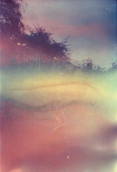Tumblr : Tien Austin #photography #nature