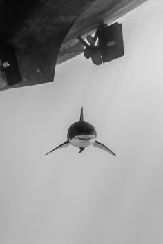 Underwater flying
